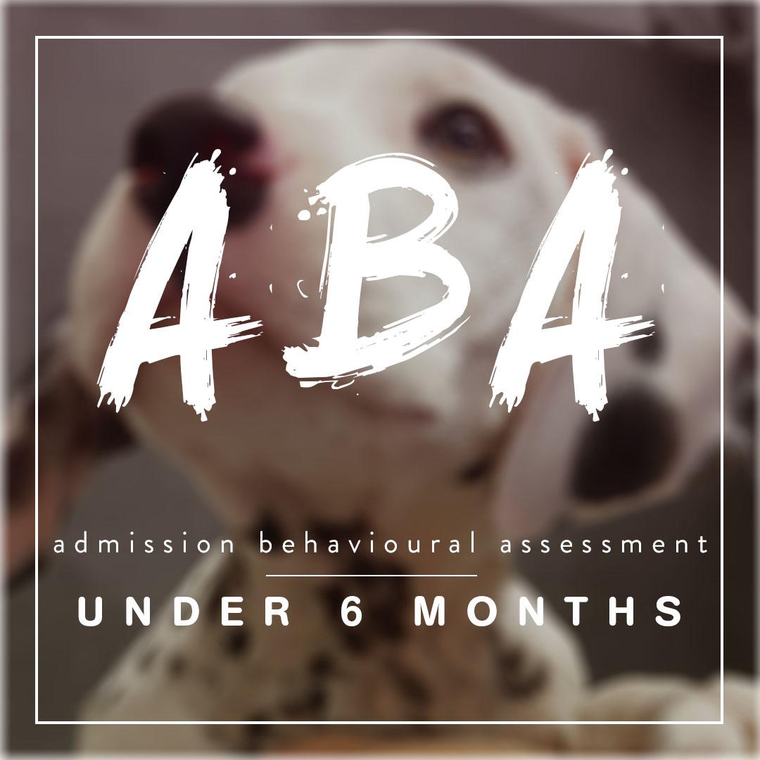 ABA Under copy