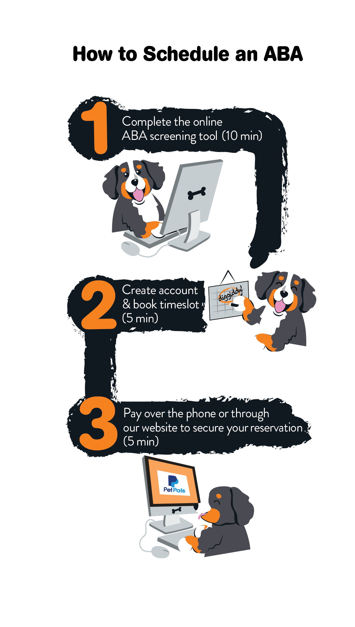 diggiddy infographic ABA process