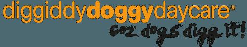 Diggiddy Doggy Daycare