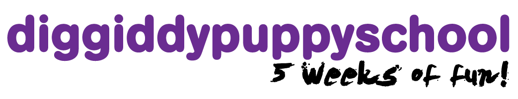 puppyschool header